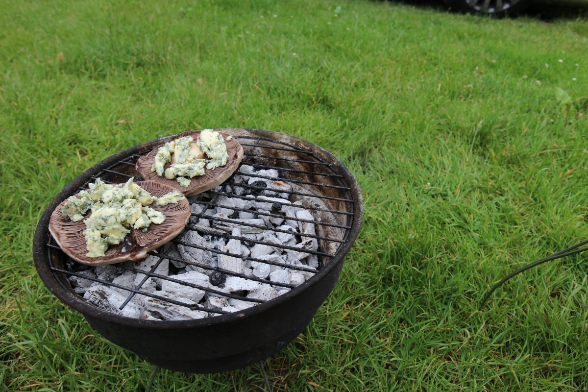 How to eat well when camping