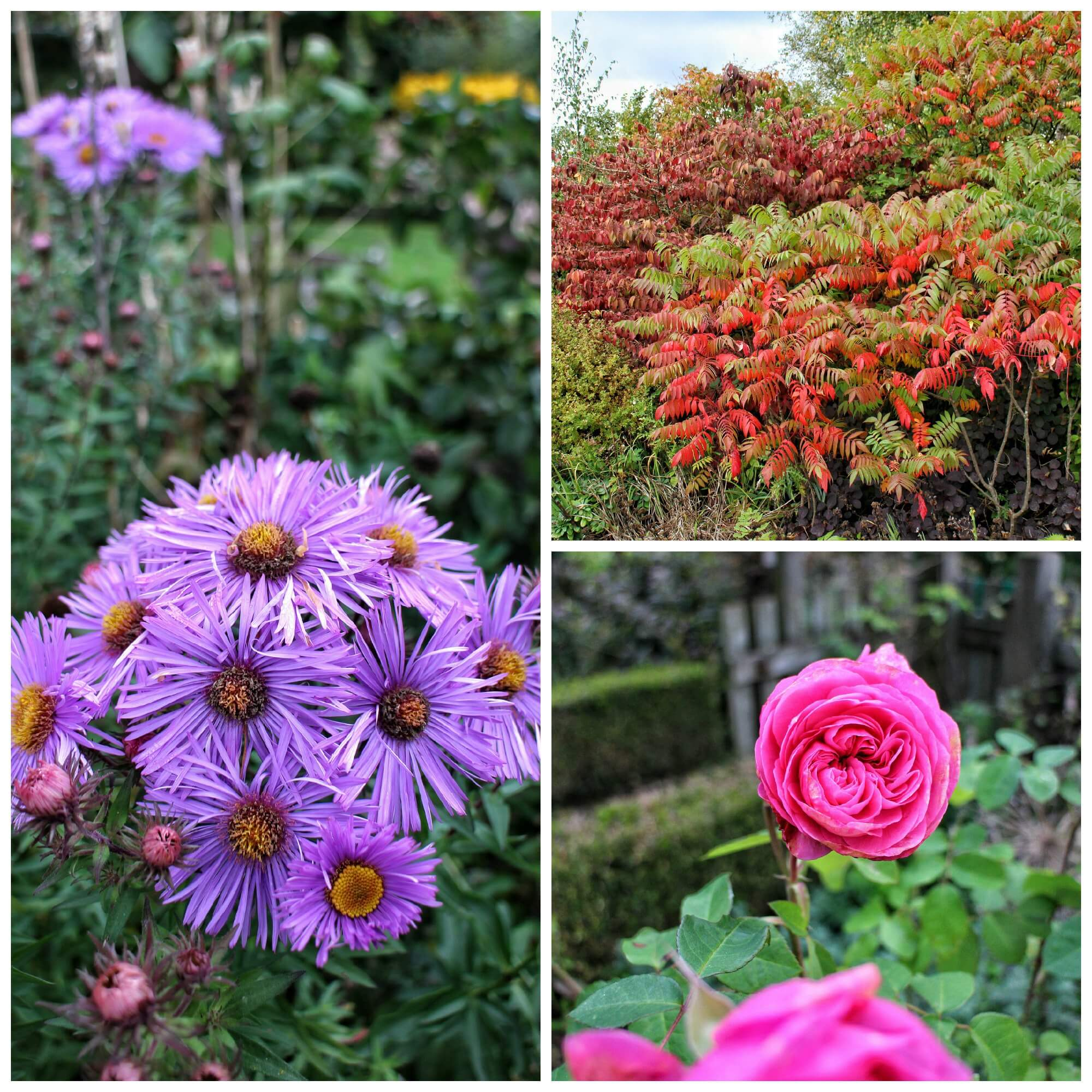 I'd love to go back in Spring and Summer to see how the gardens change through the seasons