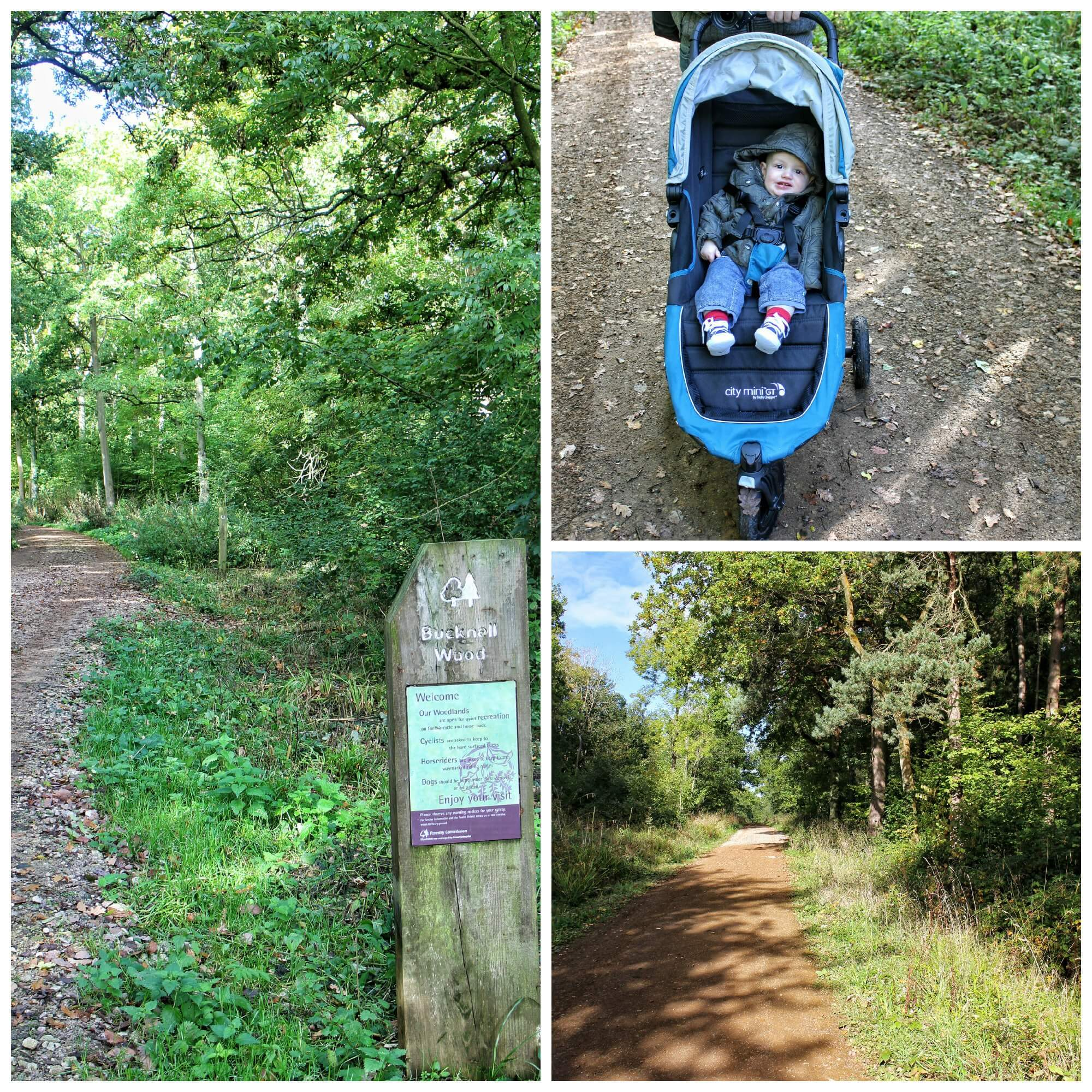 We took the pushchair so kept to the main path (to begin with!)