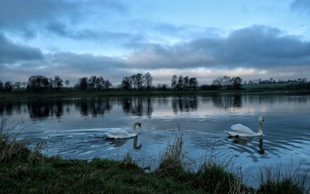 Sywell Country Park, Northants