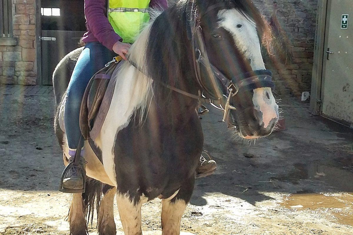 Pony Trekking through Cresswell Crags