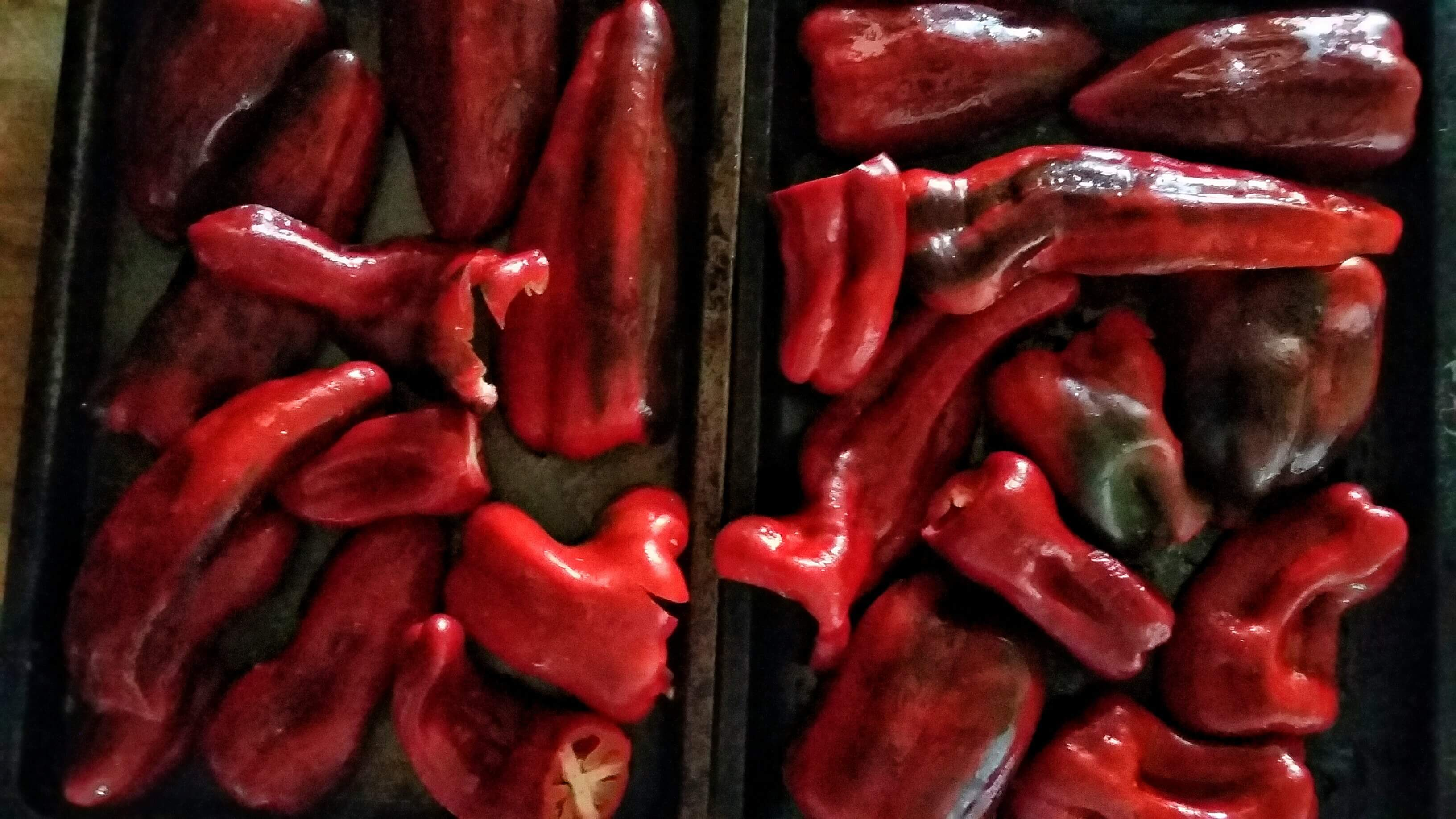 peppers3_162612-01.jpeg