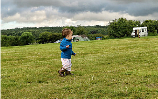 Review: Manor Farm Campsite, Norfolk
