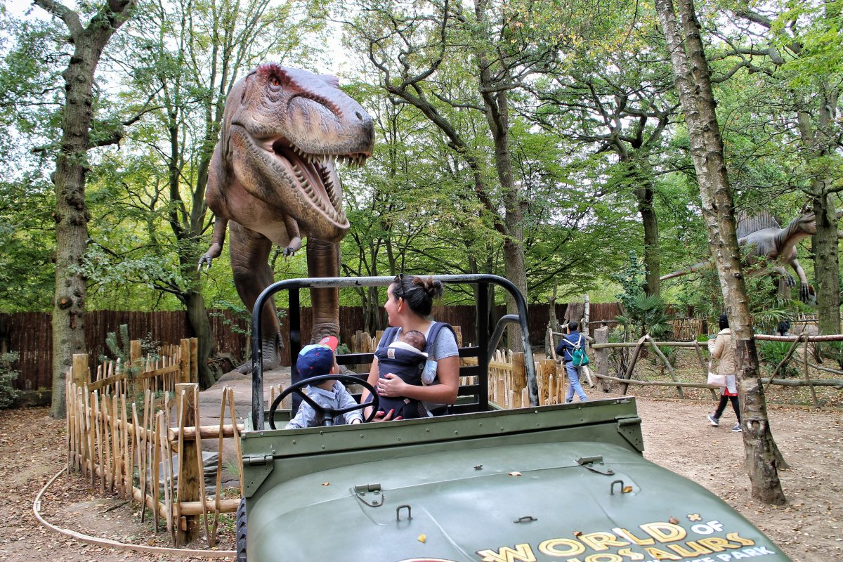 Review: Paradise Wildlife Park