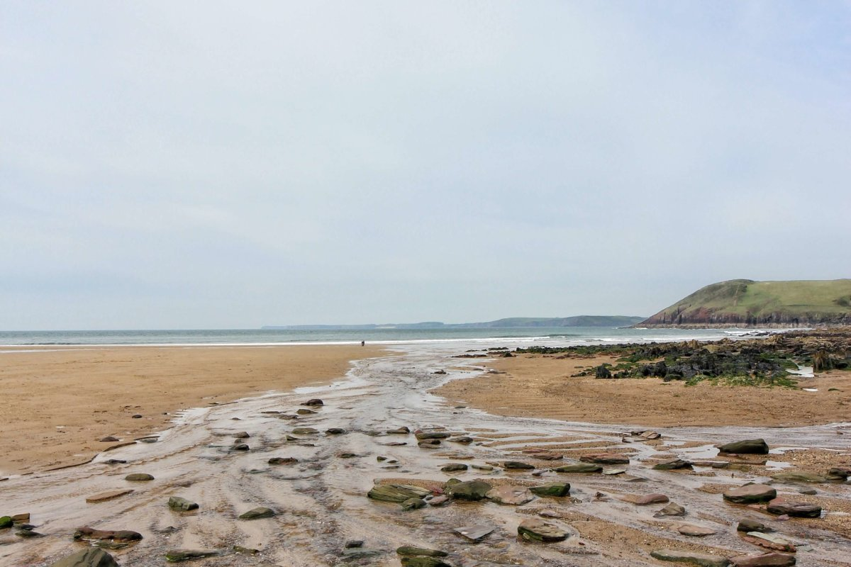 Things to do near Bluestone: Manorbier Beach and Castle